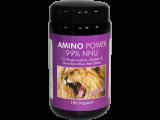 Amino Power - 180 Kapseln